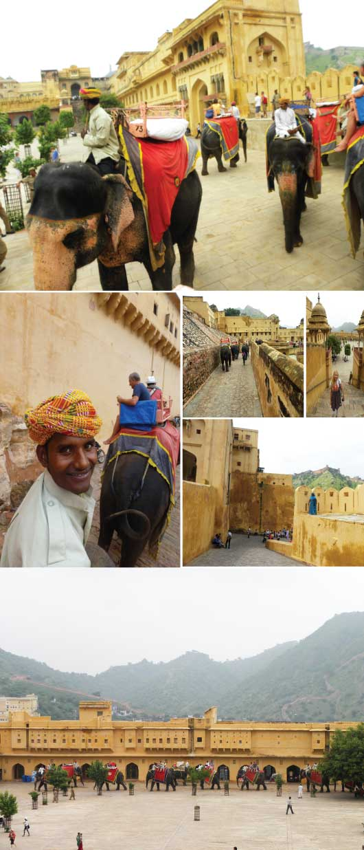 Elephant Ride, Amer Fort, Jaipur, India
